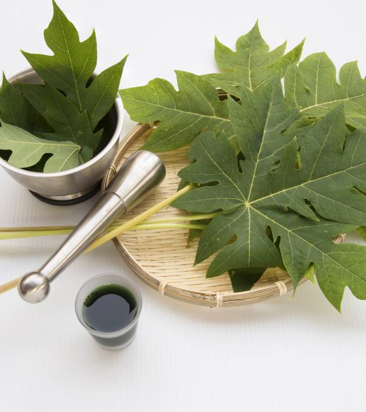 Papaya Leaf Juice Benefits and Side Effects in Hindi