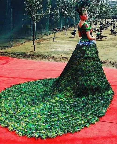 Peacock Wedding Dress – $1.5 Million