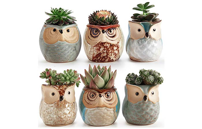 Pot Flower Pot