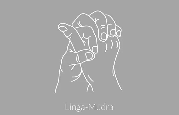 linga-mudra