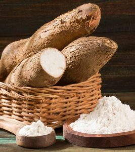 Cassava Benefits, Uses and Side Effects in Hindi