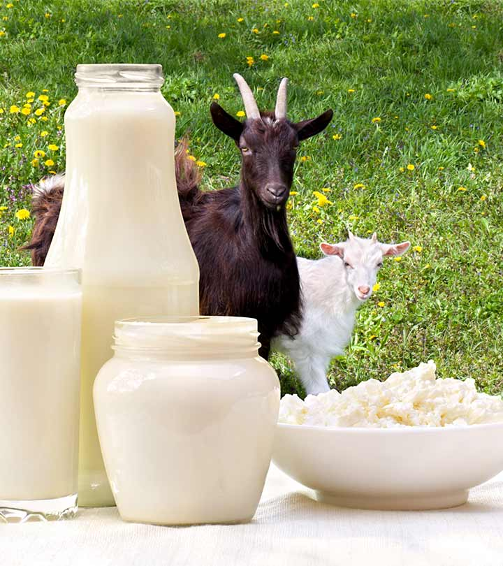 Goat Milk Benefits and Side Effects in Hindi