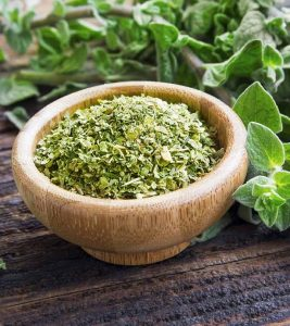 Oregano Benefits, Uses and Side Effects in Hindi