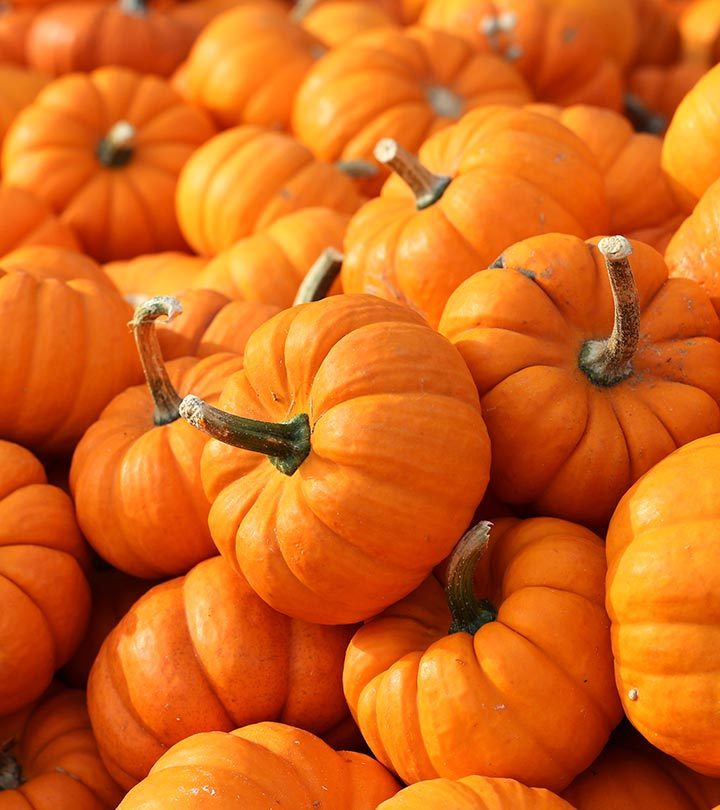 Pumpkin Benefits, Uses and Side Effects in Hindi