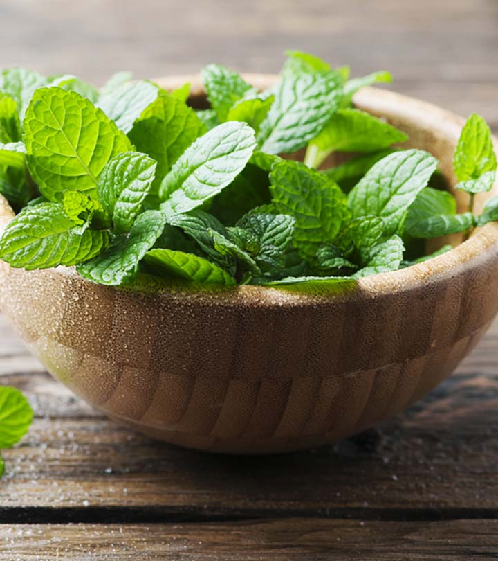 Peppermint (Pudina) Benefits and Side Effects in Hindi