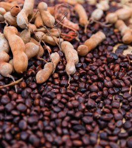 Tamarind Seed Benefits and Side Effects in Hindi