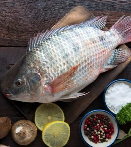 Tilapia Fish Benefits and Side Effects in Hindi