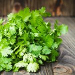 Benefits Of Coriander Leaves in Hindi