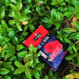 Luxura Sciences Hibiscus Powder 200 Gms-A Good Hair mask For hair it makes your hair smooth soft and shiny .-By prachi_bhopi