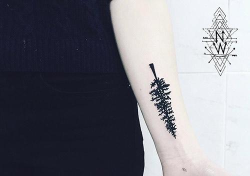 Cedar Tree Of Life Tattoo