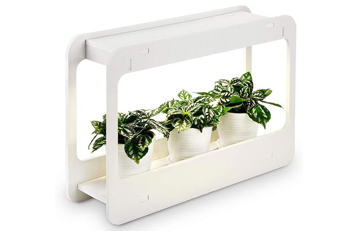 TORCHSTAR Indoor Herb Garden With Timer Function And LED Lights