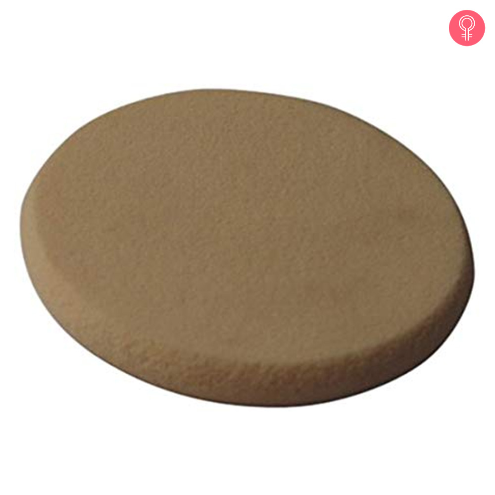 Vega Make Up Foundation Sponge