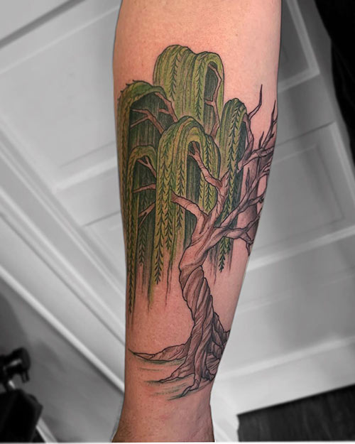 Willow Tree Of Life Tattoo