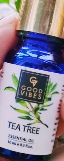 Good Vibes Tea Tree Essential Oil-Green tea essential oil is good for hair strengthening and acne control-By food_blog959