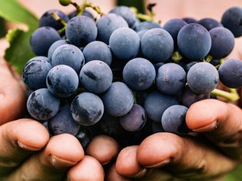 Black Grapes Benefits and Side
