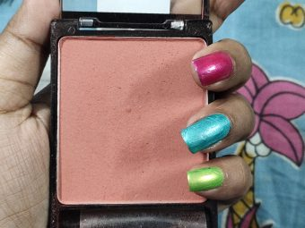Wet n Wild Color Icon Blush pic 2-Nice-By s_a_n_z_0