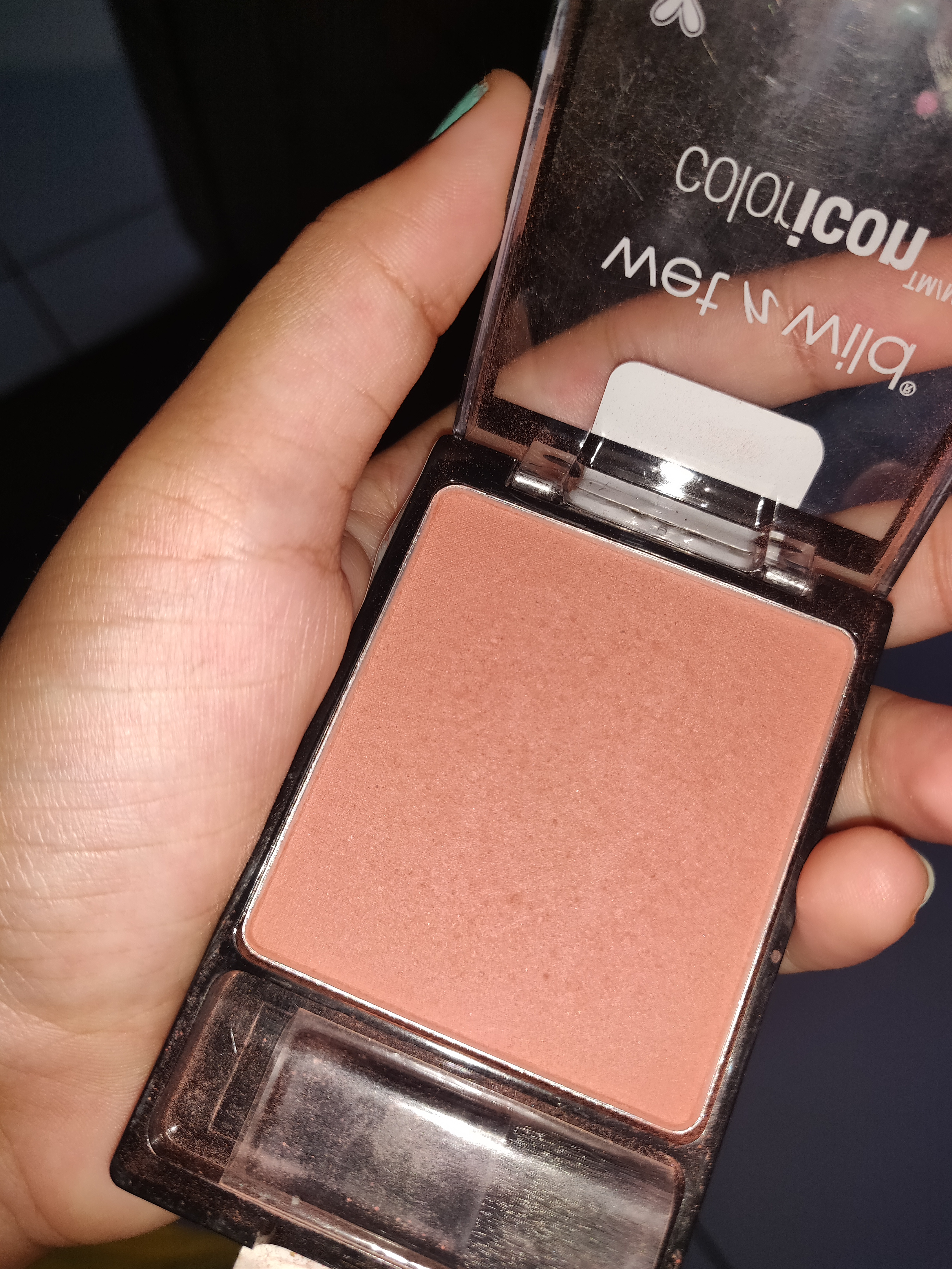 Wet n Wild Color Icon Blush-Great for everyday use.-By tarini_shah-2