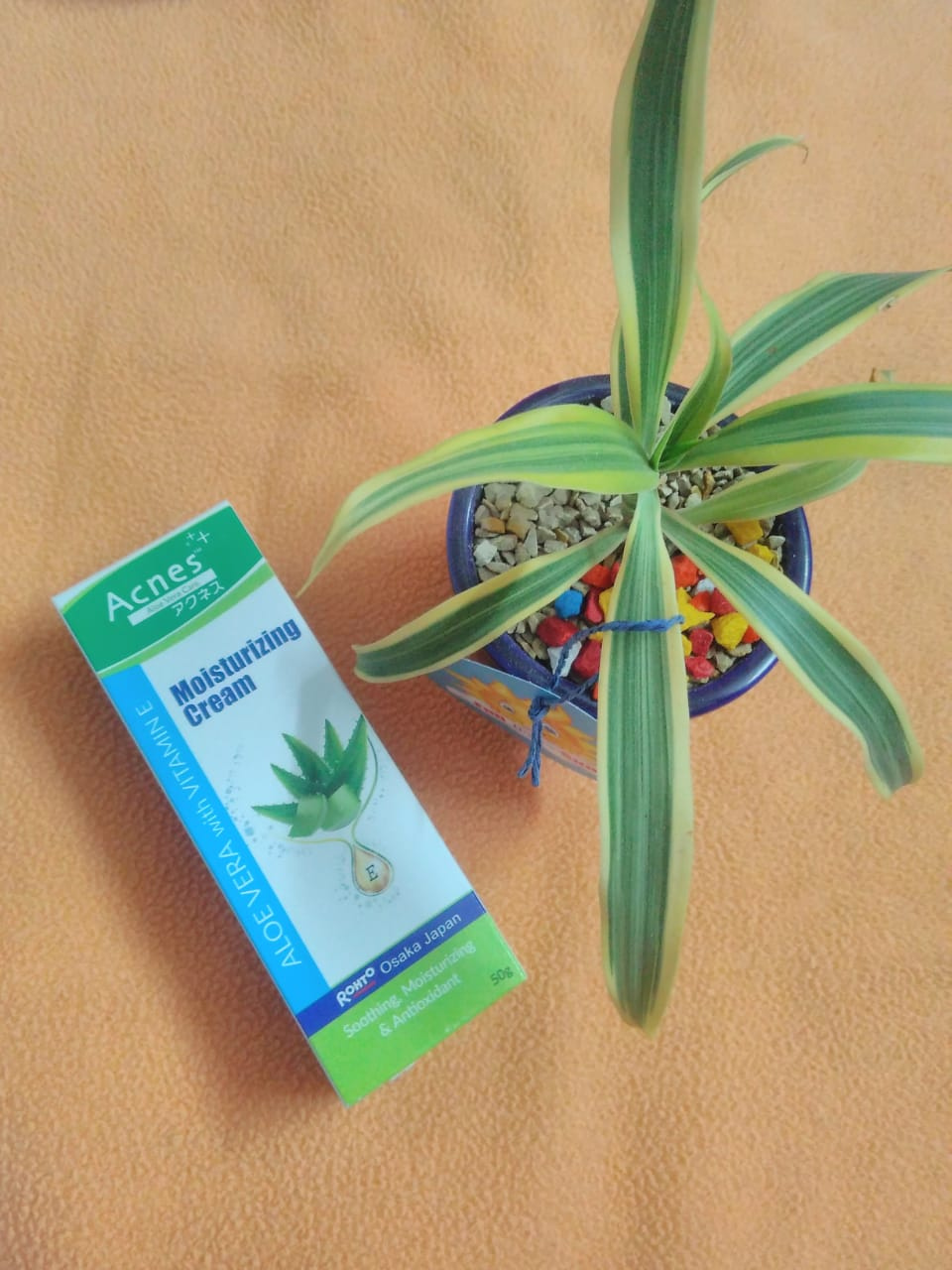 Acnes Aloe Vera With Vitamin E Moisturizing Cream-Makes skin healthy-By kalpana__vlog