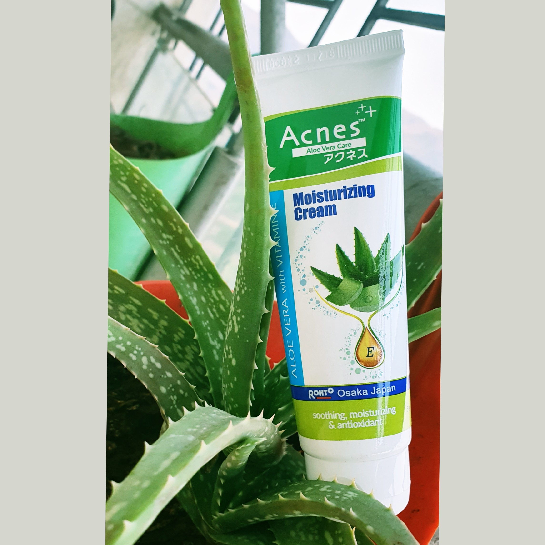 Acnes Aloe Vera With Vitamin E Moisturizing Cream-One of the best moisturizing creams-By all_the_rage_lifestyle,_travel_
