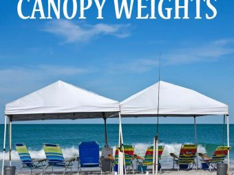 11 Best Canopy Weights
