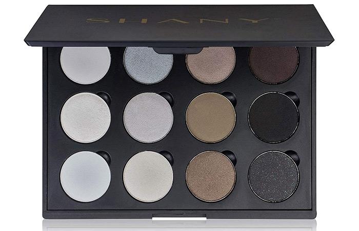 SHANY 12 Color Smoky Eyeshadow Palette