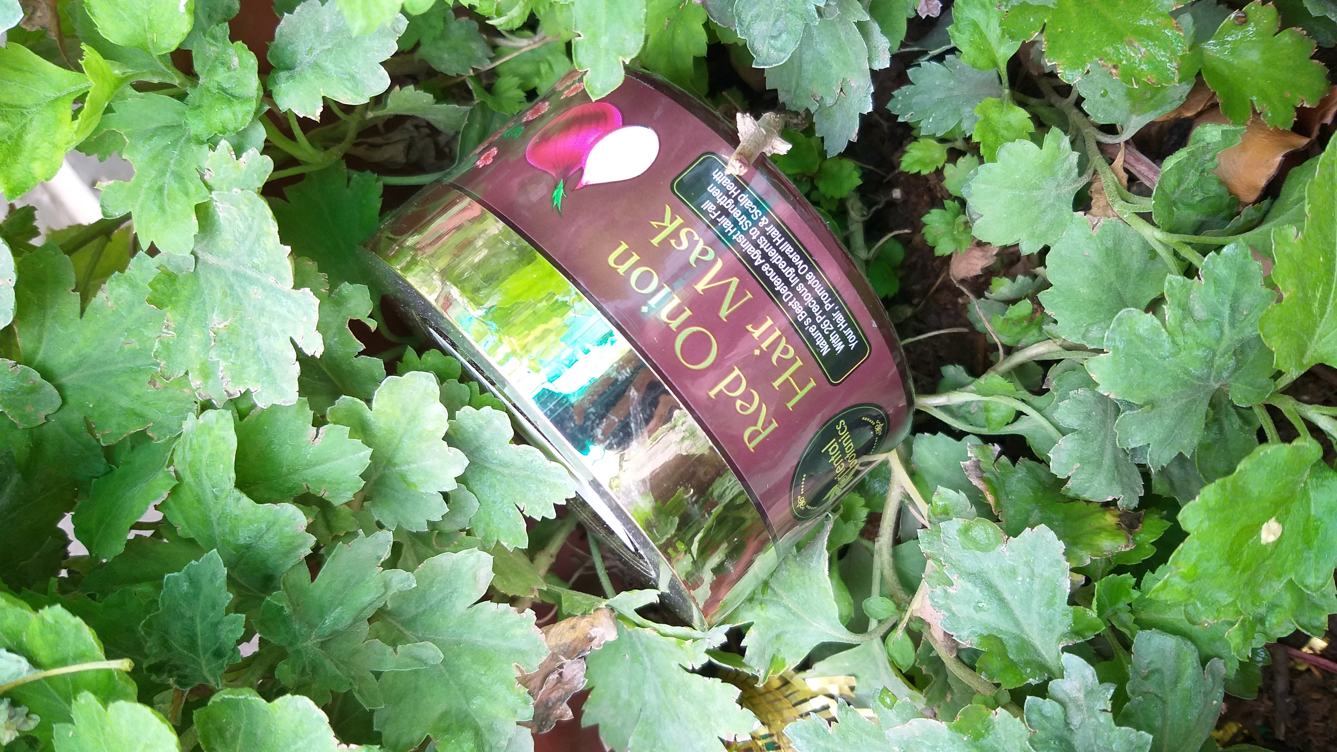 Oriental Botanics Red Onion Hair Mask-Magic mask!!-By sarcasm_nd_wine_-3