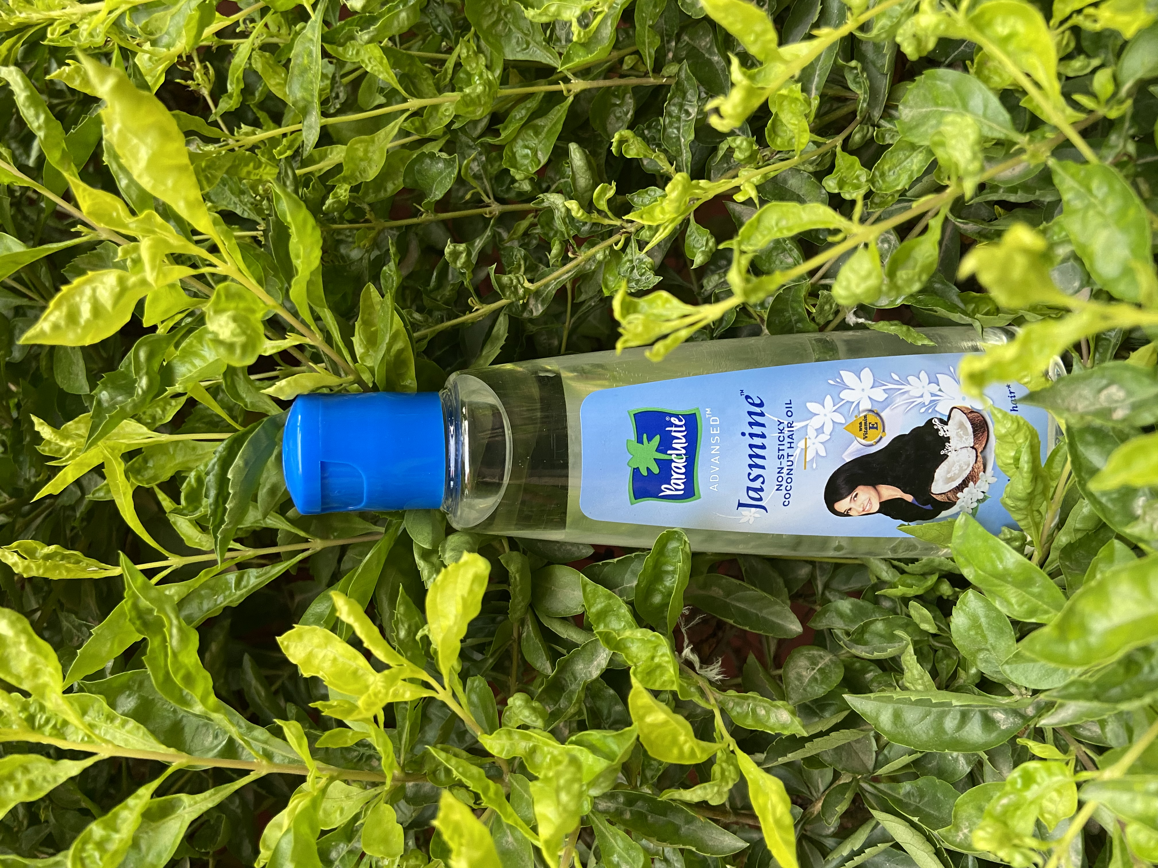 Parachute Advansed Aloe Vera Enriched Coconut Hair Oil pic 2-Hairoil that Has Jasmine in the Core-By kirti_widhera