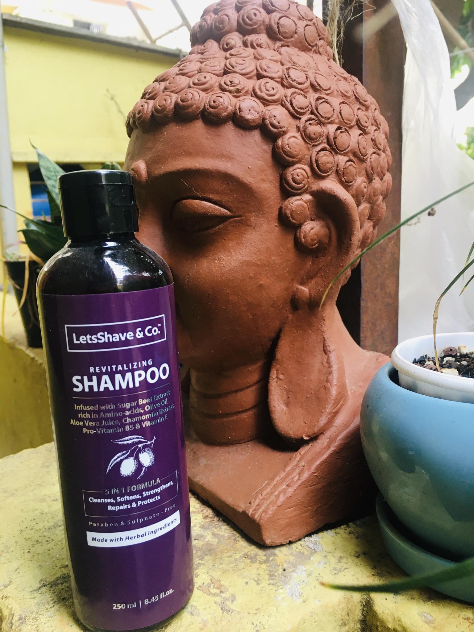 LetsShave Shampoo Conditioner Pack-Best friend of my hair-By sunitha_behura_rastogi-1