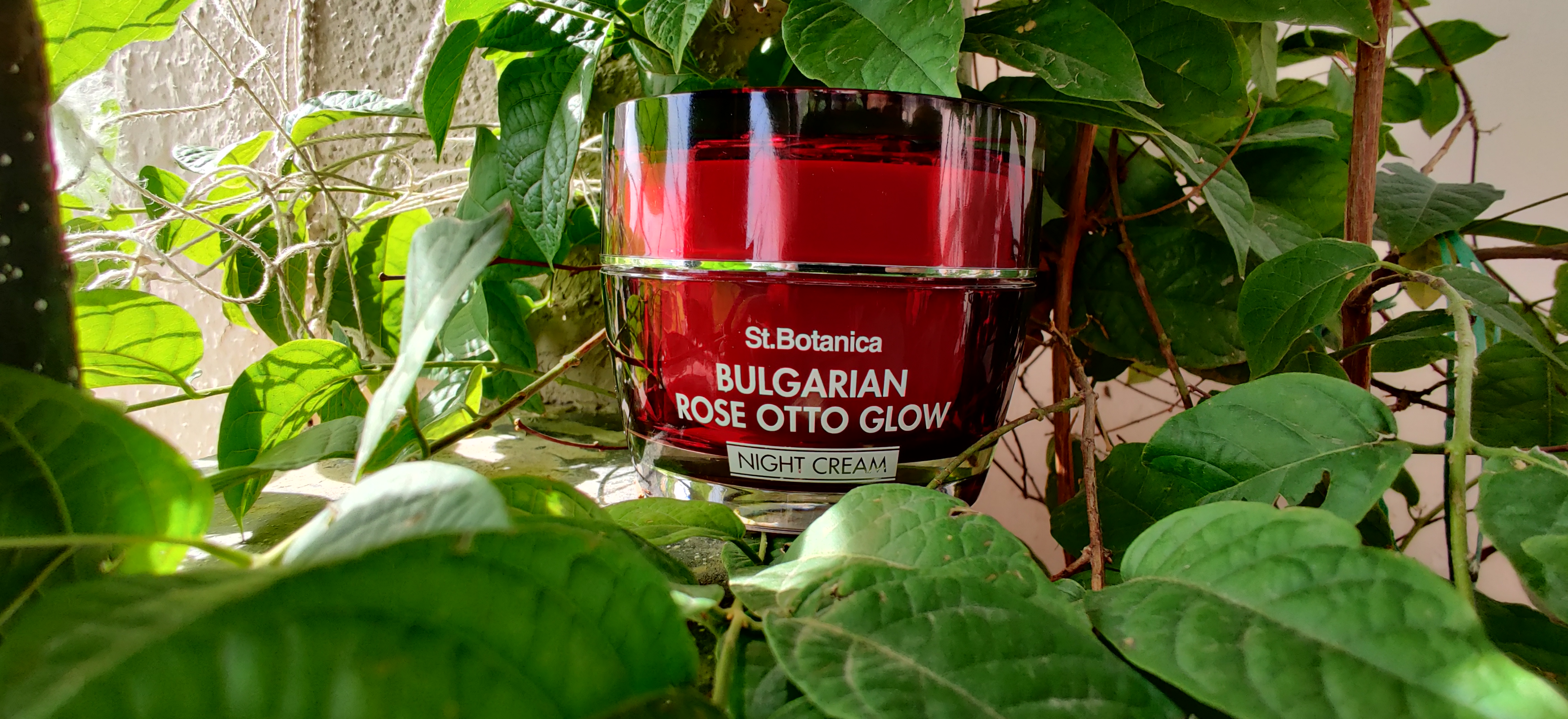 St.Botanica Bulgarian Rose Otto Glow Night Cream-Night food for skin-By meghanka_parihar