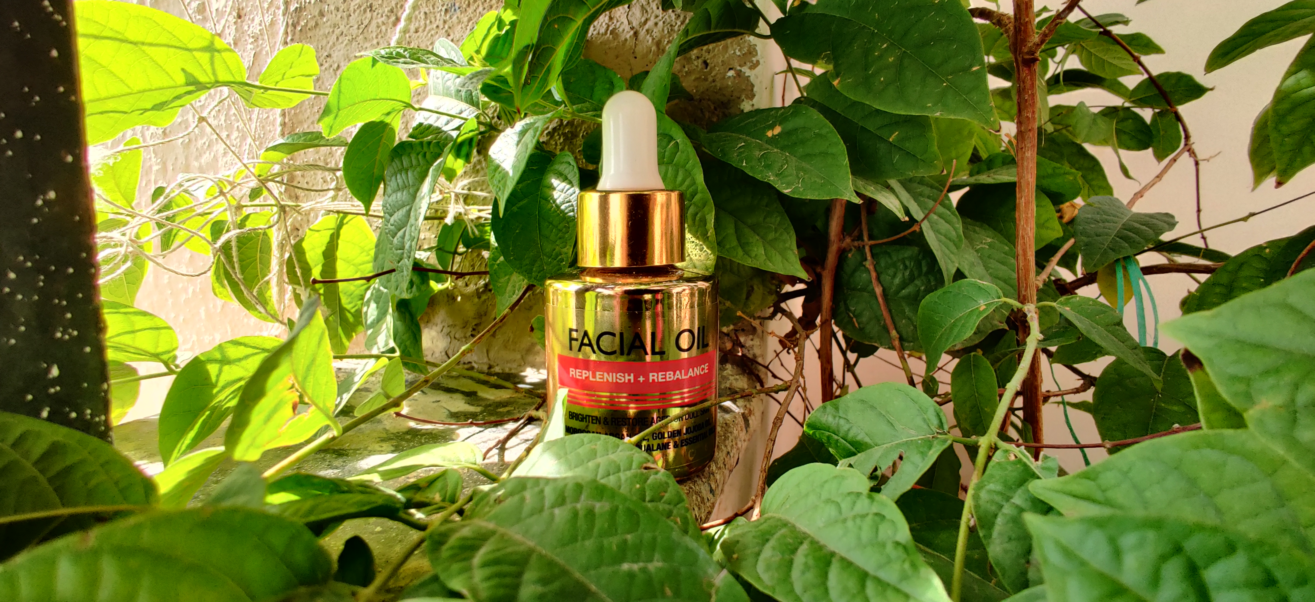 StBotanica Pure Radiance Facial Oil-Needed this from so long-By meghanka_parihar
