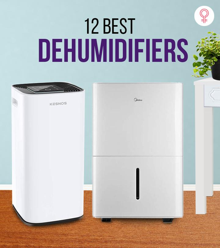 12 Best Dehumidifiers For Stuffy Basements