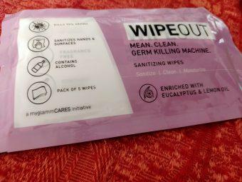MyGlamm Wipeout Sanitizing Wipes -Amazing wipes-By crazyfoodieiss