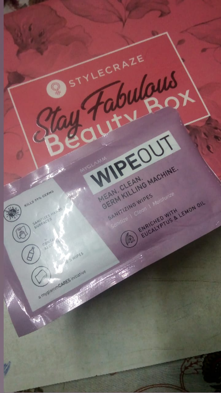 MyGlamm Wipeout Sanitizing Wipes-Germ Protector-By pinalchauhan-2