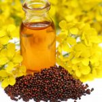 Benefits of Mustard oil in Tamil