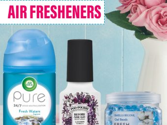 The 10 Best Air Fresheners – Reviews