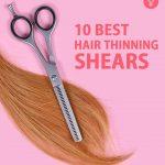 10 Best Hair Thinning Shears