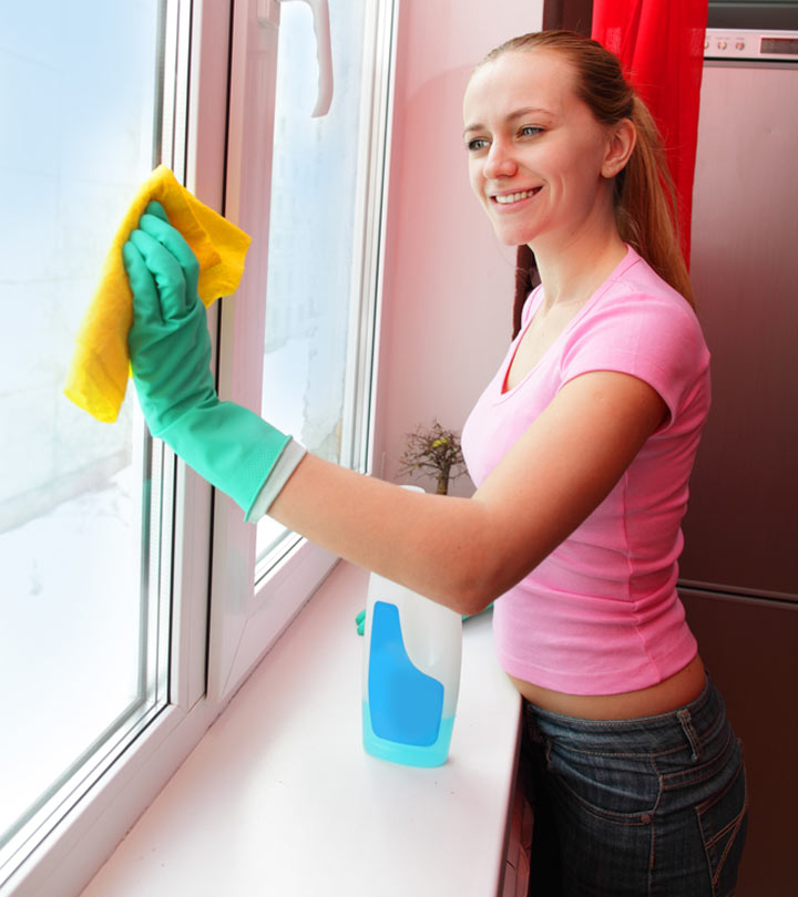10 Best Window Cleaners – Reviews