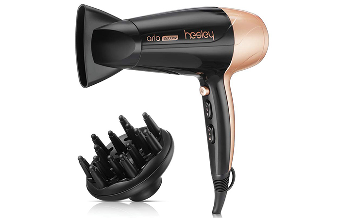 Hesley Aria Professional Hair Dryer