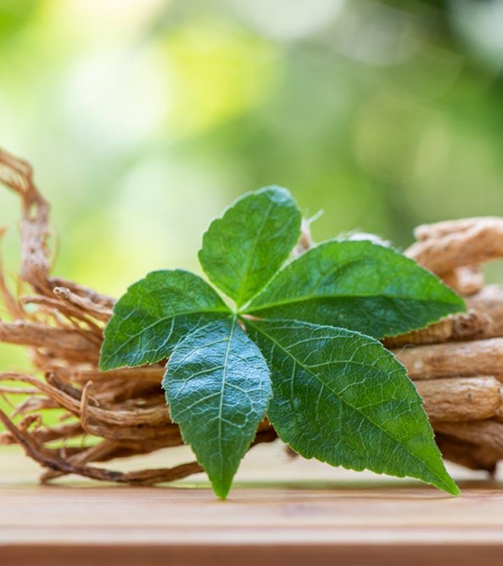 ஆண்மையை அதிகரிக்கும் ஜின்செங்.. சிறு தாவரம் தருமே பேரின்பம் – Benefits of Ginseng in Tamil