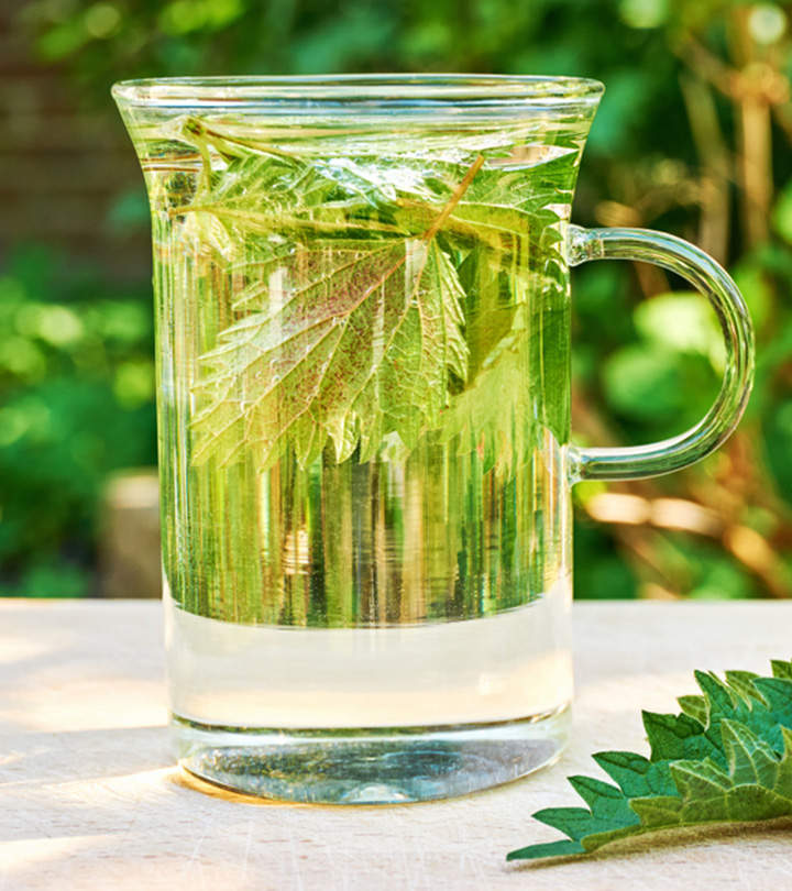 Benefits of Nettle leaf in Tamil