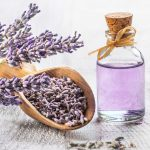 Lavender Oil For Beautiful, Thick Hair