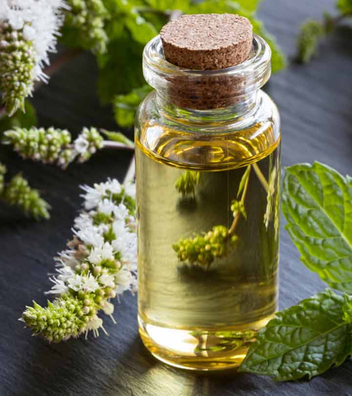 Peppermint Oil Benefits and Side Effects