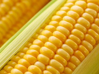 Benefits of Corn in Tamil