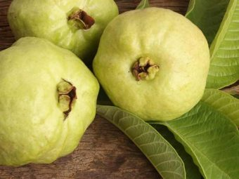 Benefits of Guava leaf in Tamil