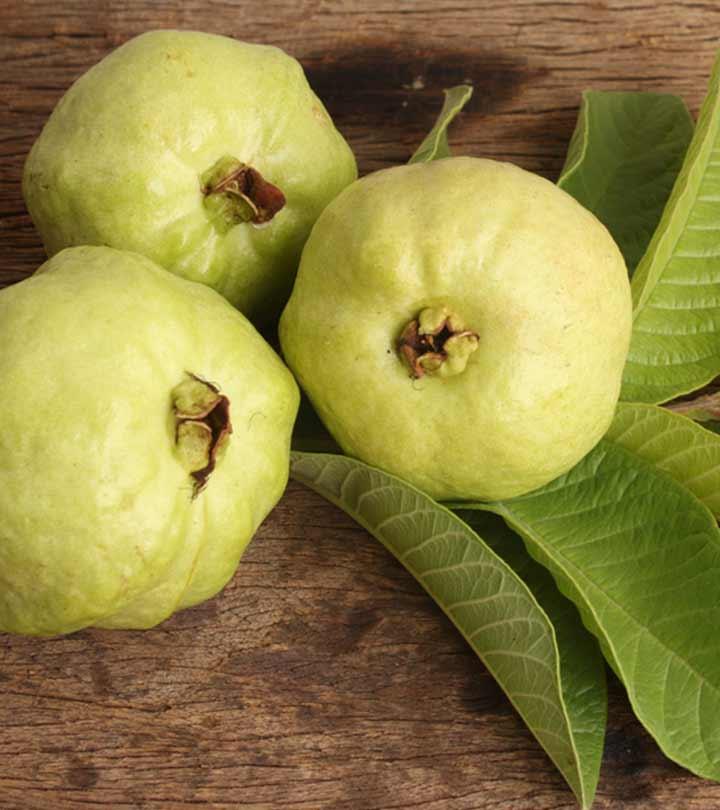 ஸ்லிம் அண்ட் ட்ரிம் பியூட்டி னு உங்களைக் கூப்பிடணும்னா.. இந்தக் கொய்யா இலையை கையில் வைங்க ! Benefits of Guava leaf in Tamil