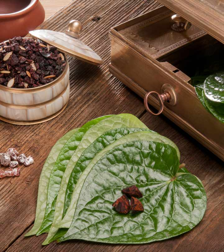 Betel Leaf Benefits and Side Effects in Hindi