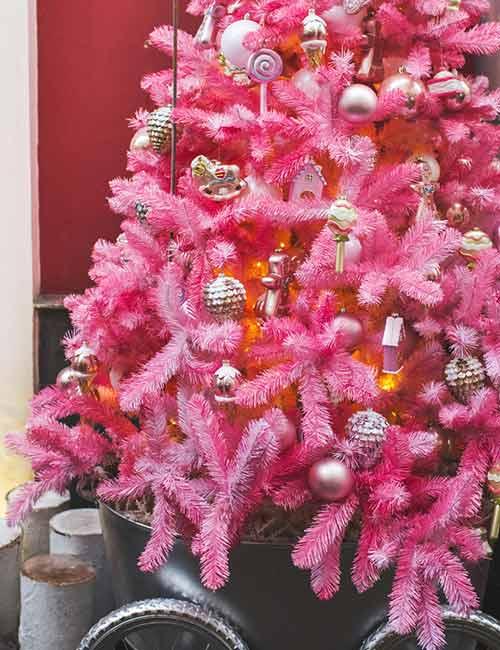 Pink Fir Branch Tree