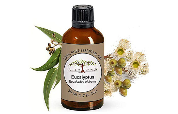 All Naturals Eucalyptus Essential Oil