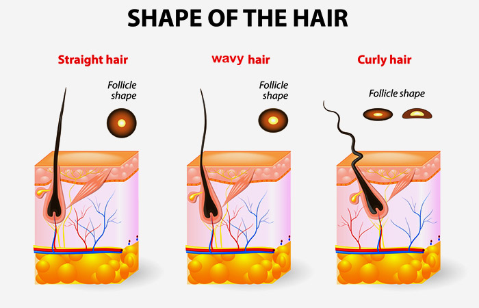 What Is 3A Type Hair