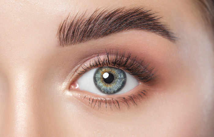 Brows That Could Cut Through Steel